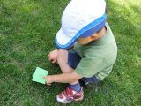 Hide and Seek reading game
