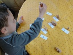 Animal Letters Action