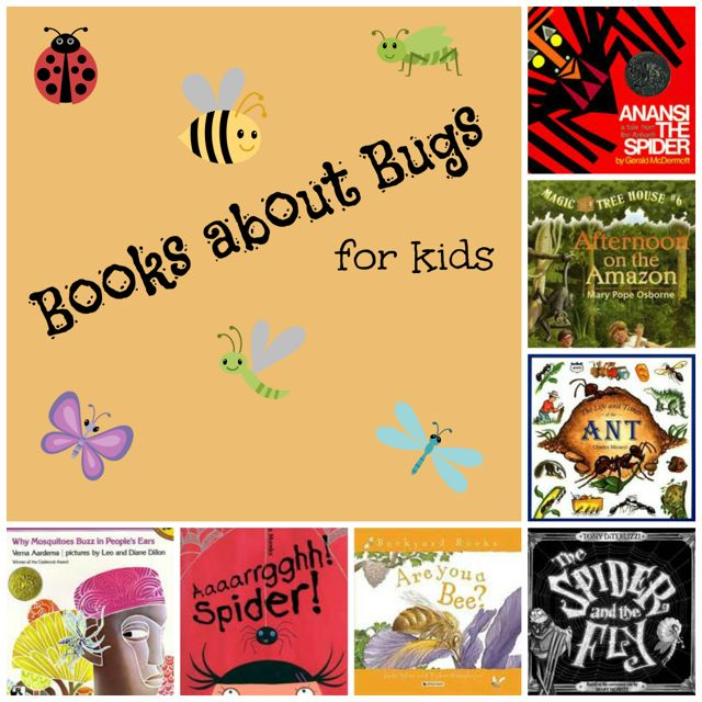 Bugs for Kids